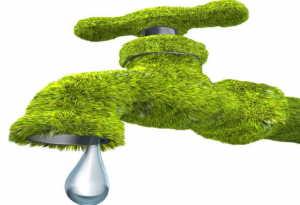 The Benefits of Hiring a Green Plumber