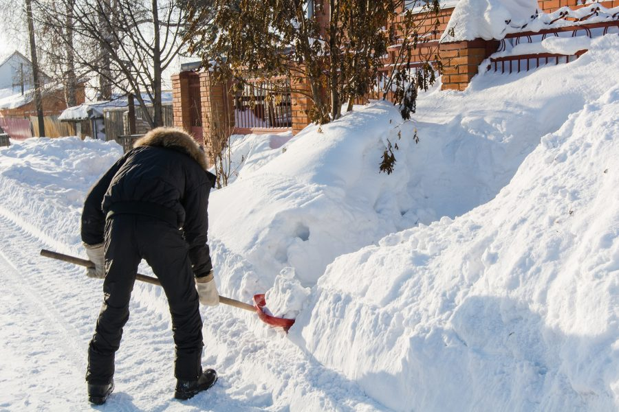 Michigander's Winter Home Guide
